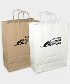 Sustainable Large Retail Paper Bag thumbnail