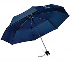 Rainlight Umbrella/Torch thumbnail