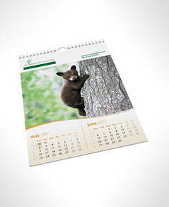 Economy Wall Calendars thumbnail
