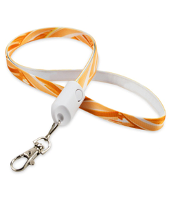 2in1 Lanyard Cable thumbnail