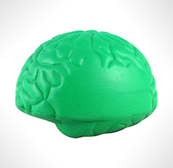Large Brain Stress Toys thumbnail