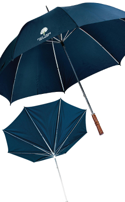 BlueStorm Umbrella thumbnail