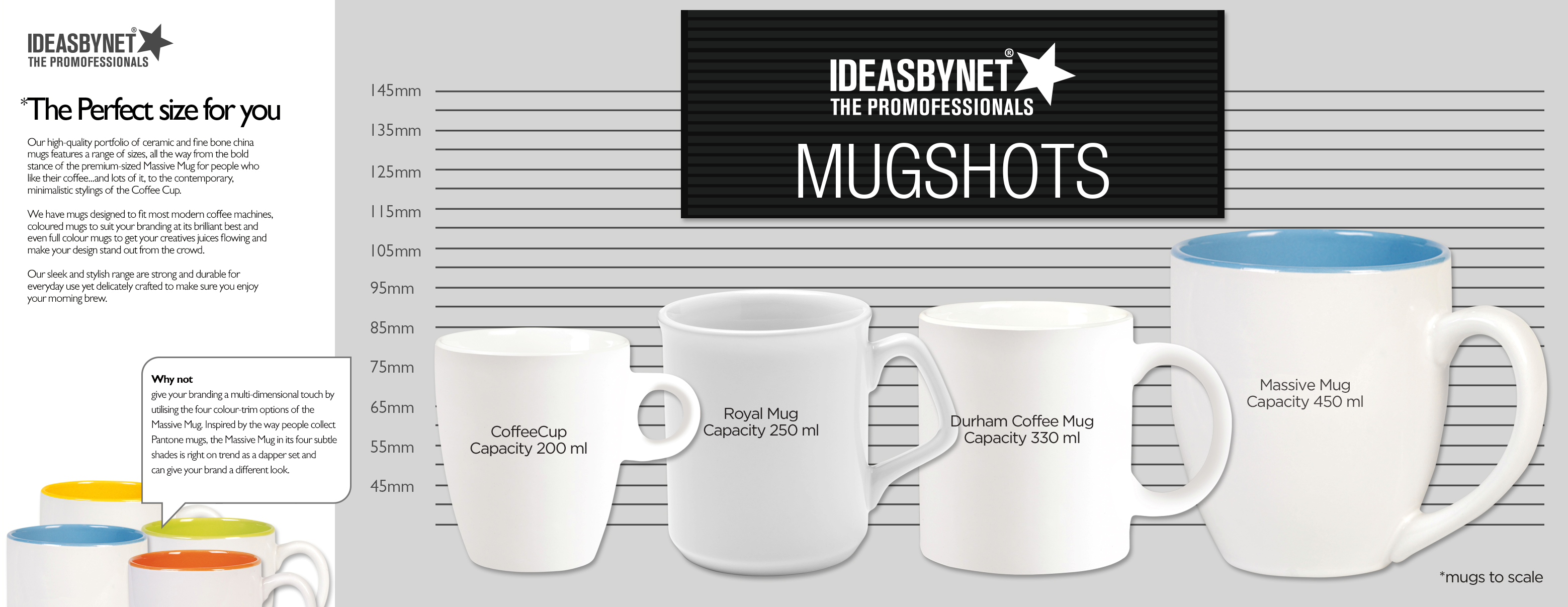 Find Out More About Our Mug Family And Get Sizes Explained Here